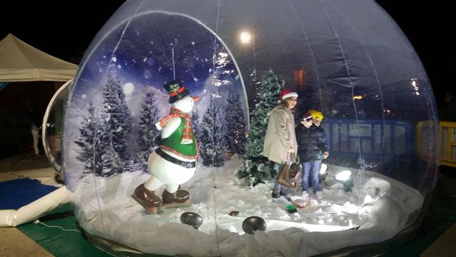 Bola de Navidad viviente